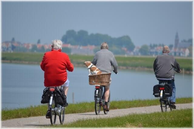 Seguridad Social en Alemania - Seguro de Jubliación